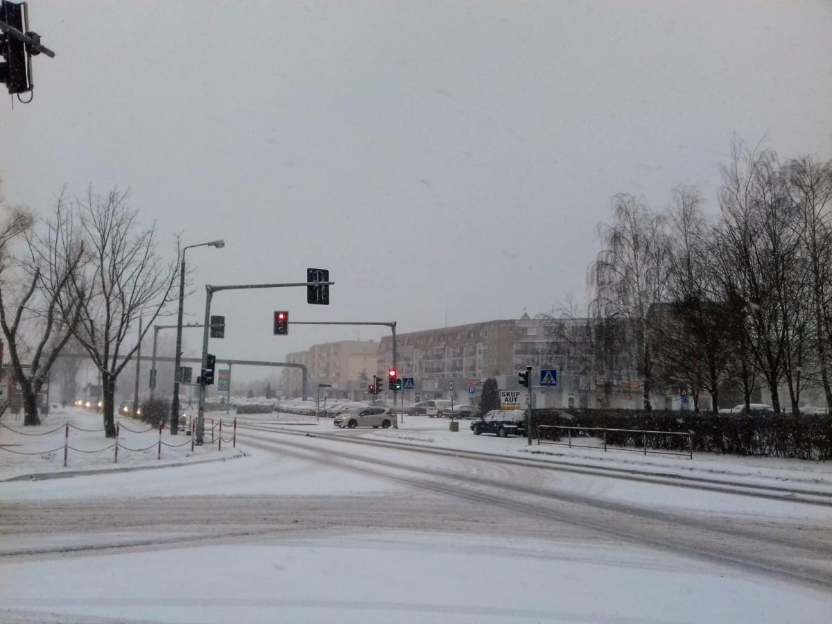 Piątek, 20 grudnia – pierwszy dzień wiosny w Śremie. Jaka pogoda w Święta?