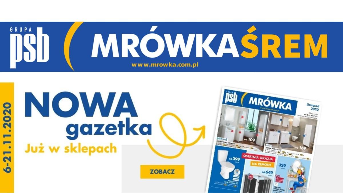 PSB Mrówka w Śremie - gazetka Listopad 2020 (do 21 listopada) [pdf do pobrania]