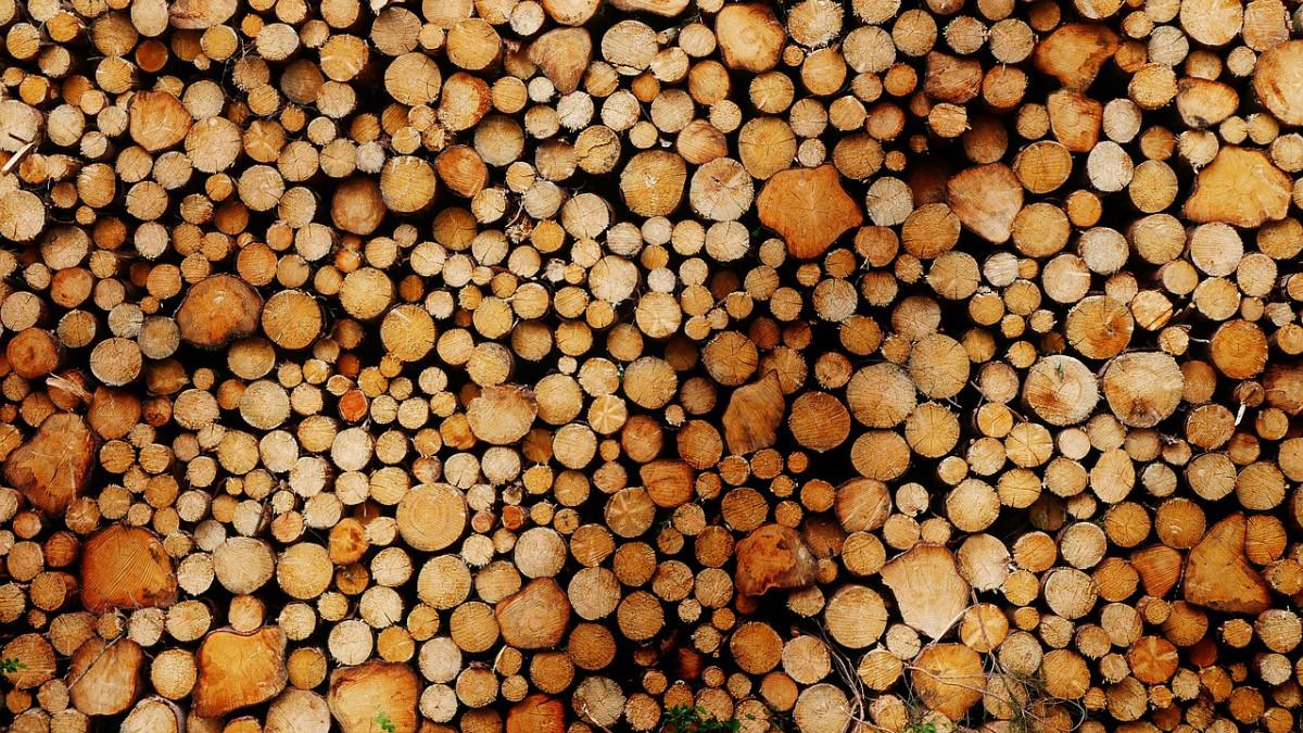 Kotły na pellet i emisja dwutlenku węgla